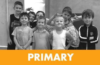 primary-links